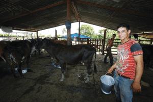 Oltre gli stereotipi: la Cuba biologica che ti sorprende