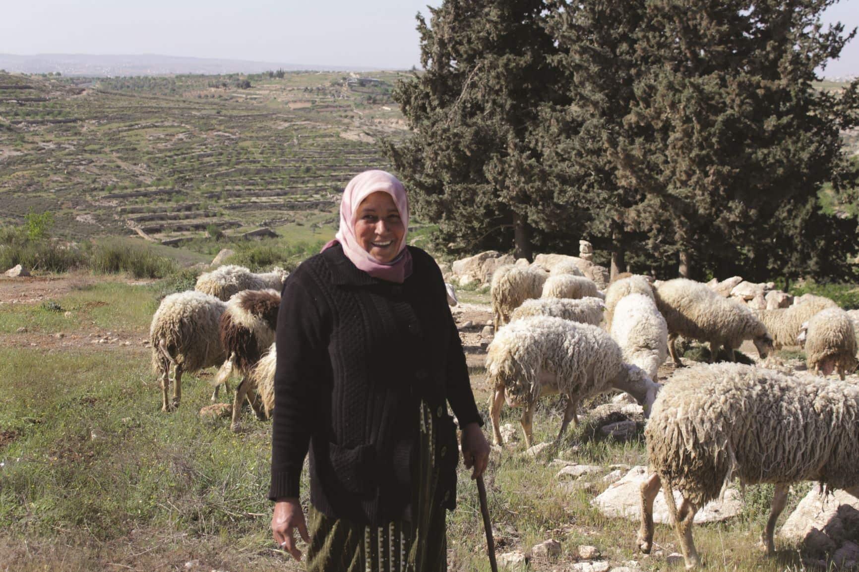 """Ho un sogno: un latte """"made in Palestine"""" buono, baladi ed economico"""